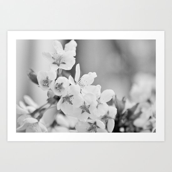 Blooming Softly Art Print