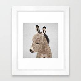 Donkey - Colorful Framed Art Print