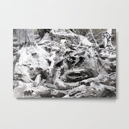 Just Driftwood Metal Print