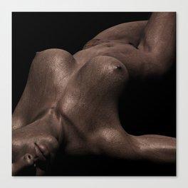 Bodyscape2 Canvas Print