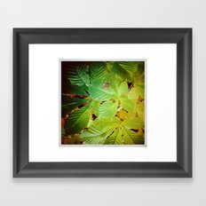 Autumnal#5 Framed Art Print