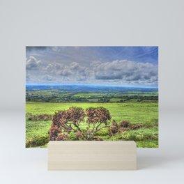 Dartmoor National Park Devon Mini Art Print