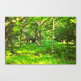 Green and Beautiful Canvas Print