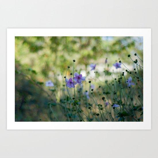 Purple meadow flowers Art Print