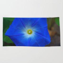 Blue, Heavenly Blue morning glory Beach Towel