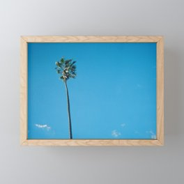 Lone Palm Framed Mini Art Print