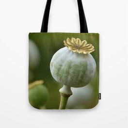 Poppy 280 Tote Bag