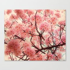 Welcome To Spring Canvas Print
