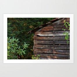 Wood shed Art Print