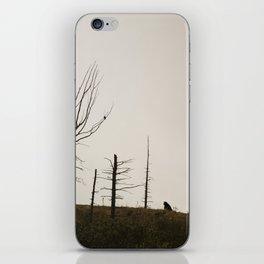Black Bear Ridge Alaska iPhone Skin
