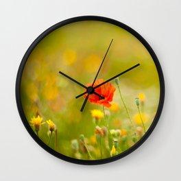 poppy flower in a field in summer Wall Clock