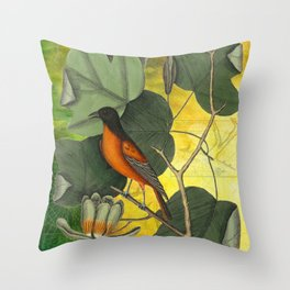 Baltimore Oriole on Tulip Tree, Vintage Natural History and Botanical Throw Pillow