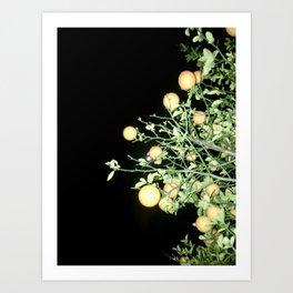 Full Moon Baby (Night Photo 5) [Cecilia Lee] Art Print