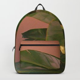Passionz Backpack