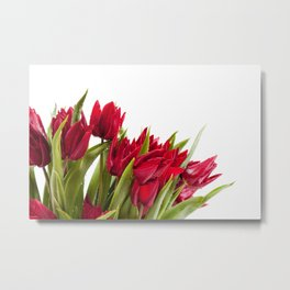 Red tulips bouquet sprinkled Metal Print