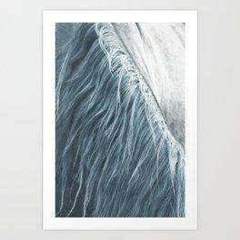 Horse mane photography, fine art print n°1, wild nature, still life, landscape, freedom Art Print