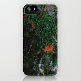 Summer #2 iPhone Case