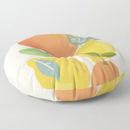 Citrus Fruits Floor Pillow