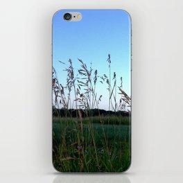 Petosky Home iPhone Skin