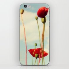 Lost Poppies iPhone & iPod Skin