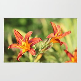 Day Lilies Rug