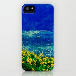 No. 3 Okanagan Sunflowers at Dawn iPhone Case