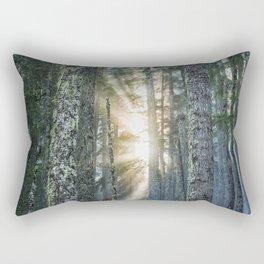 Filtered Light Rectangular Pillow