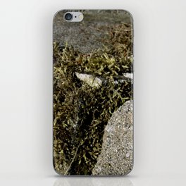 Nature's Mossenger iPhone Skin