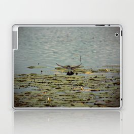 Flying Bird Hovering over Water Color Nature Photography Laptop & iPad Skin