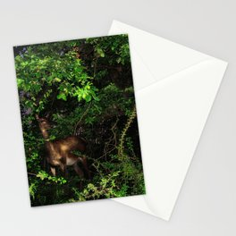 Doe in the bushes Stationery Cards