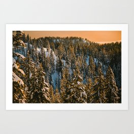 Mt. Seymour Art Print