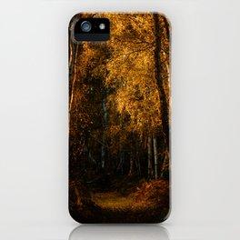Harsh Autumn Light at Holme Fen iPhone Case