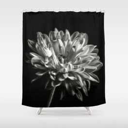 Black and White Dhaila Shower Curtain