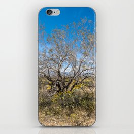 Tree Of Life 7289 Joshua Tree iPhone Skin
