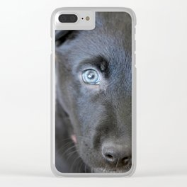Puppy Face Clear iPhone Case