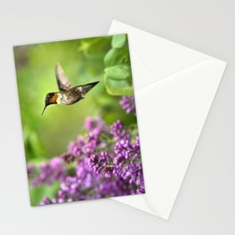 Hummingbirds Welcome Stationery Cards