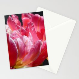 Pink Parrot Tulips close up VI Stationery Cards