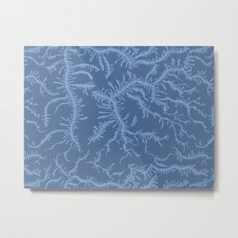 Ferning - Blue Metal Print