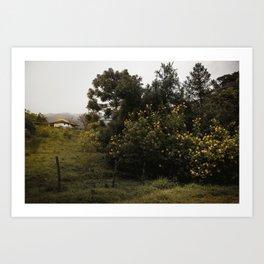 Countryside landscape nº 2 Art Print