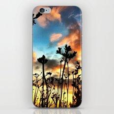 Calico Skies iPhone & iPod Skin
