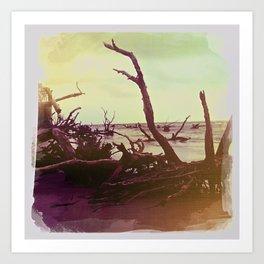 Driftwood 1, Charleston, SC Art Print