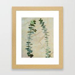 Eucalyptus in Gold  Framed Art Print