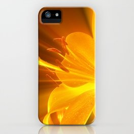 Gelbe Lilie iPhone Case
