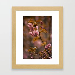 """Rose"" Gold I Framed Art Print"