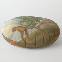 George Stubbs - Pumpkin with a Stable-lad Floor Pillow