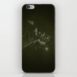 burton iPhone Skin