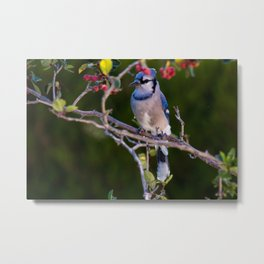 Time To Party Metal Print