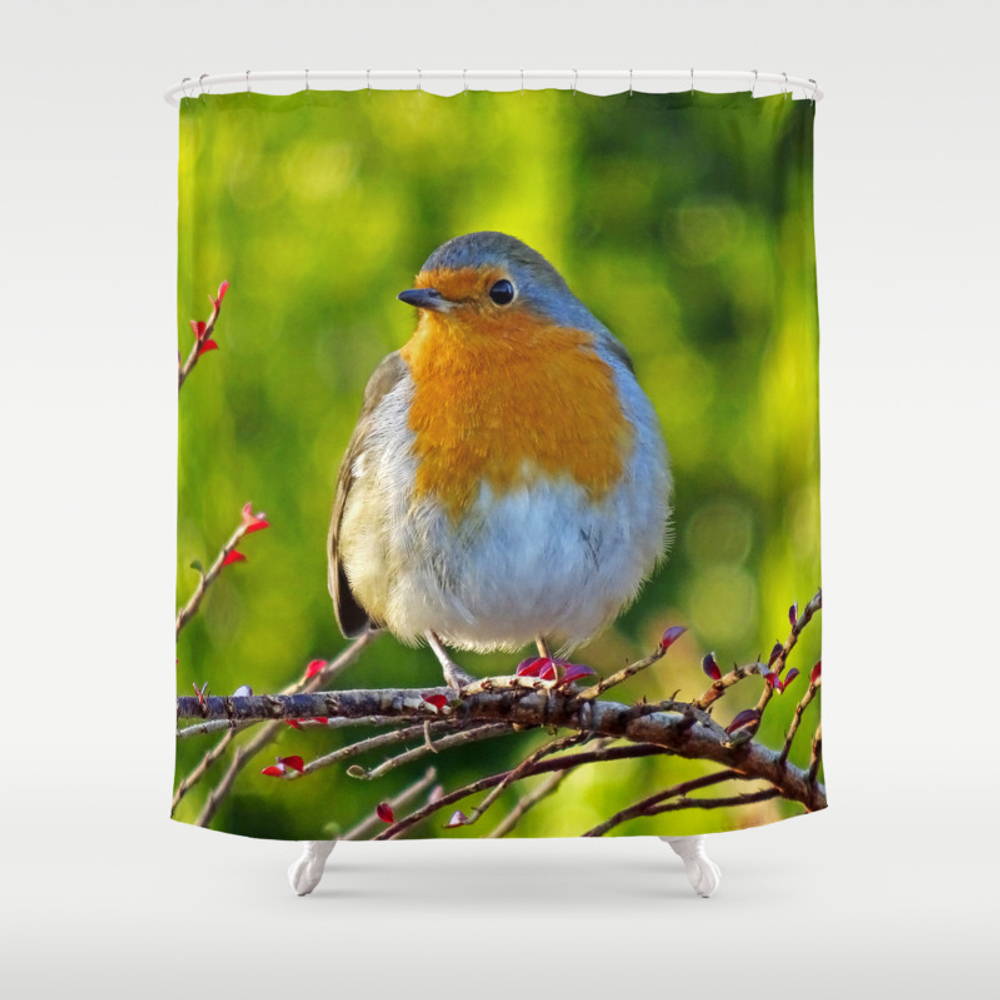 Robin Redbreast Shower Curtain by Catherineogden (CTN8331014) photo