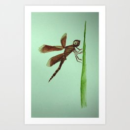 Mosquito on blade of grass Art Print