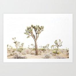 Joshua Tree Desert Print Art Print